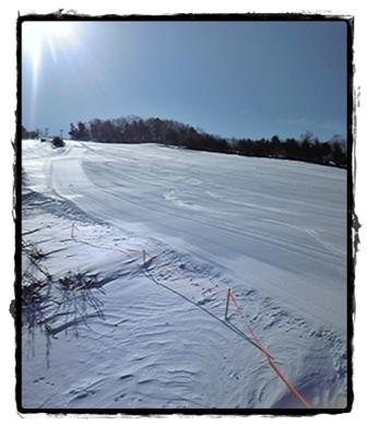4月の雪.JPG